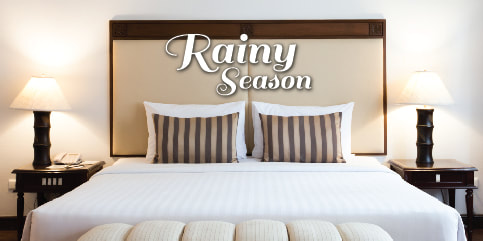 Rainy Season Promotion